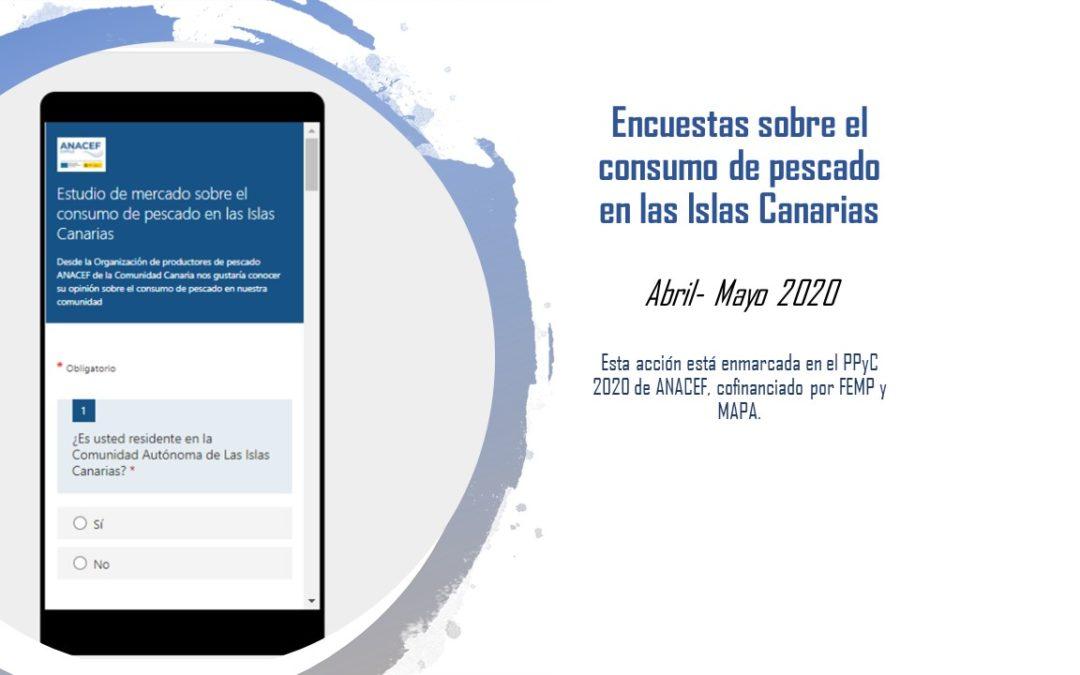 ANACEF inicia un estudio sobre el consumo de pescado en Canarias