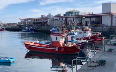 El Gobierno canario destinará 4,3 millones del FEMP a paliar los efectos del Covid-19 en el sector pesquero